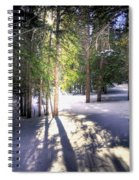 Trail To Bear Lake 4490 Spiral Notebook