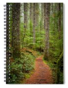 trail to Lower Lewis Falls Spiral Notebook