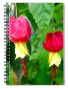 Trailing Abutilon Or Lantern  Flower Spiral Notebook