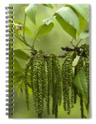 Trailing Green Draperies Spiral Notebook