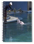 Trainer Feeding Duo Of Dolphins At The Underwater World In Sentosa Spiral Notebook