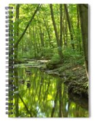 Tranquility In The Forest Spiral Notebook