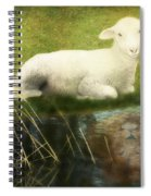 Transformation Lamb Or Lion Spiral Notebook