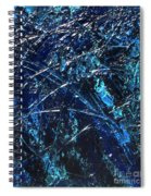 Transitions I Spiral Notebook