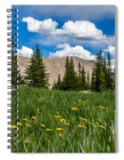 Trappers Lake Meadow Spiral Notebook