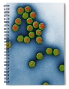 Trasmission Electron Micrograph Spiral Notebook