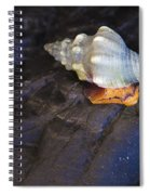 Traveling At A Snail's Pace Spiral Notebook
