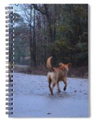Traveling Twins Spiral Notebook