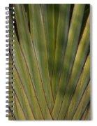 Traveller's Palm Patterns Dthb1542 Spiral Notebook