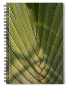 Traveller's Palm Patterns Dthb1543 Spiral Notebook