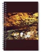 Treasure Bark 3 Spiral Notebook