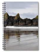 Treasures Of Earth Spiral Notebook