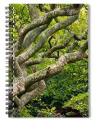 Tree #1 Spiral Notebook