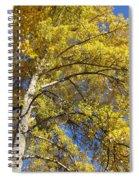 Tree 4 Spiral Notebook