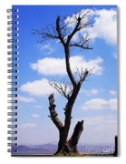 Tree 8 Spiral Notebook