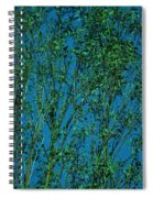 Tree Abstract Blue Green Spiral Notebook