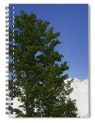 Tree Against A Cloudy Blue Sky In Vermont Spiral Notebook