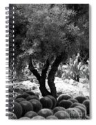 Tree And Cactus Spiral Notebook