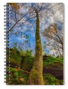 Tree And Rocks Spiral Notebook