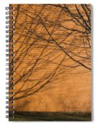 Tree And Shadow At Cogswells Grant Spiral Notebook