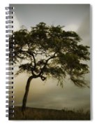 Tree And Stormy Sky Spiral Notebook