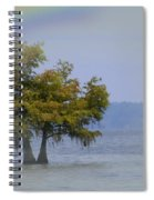 Tree And The Rainbow Spiral Notebook