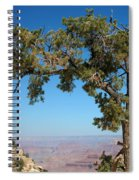 Tree Arch Spiral Notebook