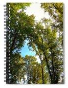 Tree Arches At Clackamette Park Spiral Notebook