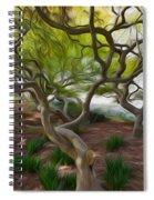 Tree At Norfolk Botanical Garden Spiral Notebook