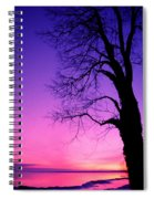Tree At Sunrise Spiral Notebook