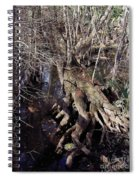 Tree Roots At The River Spiral Notebook