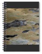 Tree Bark I Spiral Notebook