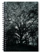 Tree Black And White Spiral Notebook