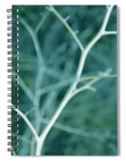 Tree Branches Abstract Teal Spiral Notebook