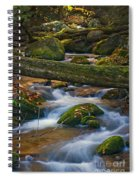 Tree Bridge In The Smokies Spiral Notebook