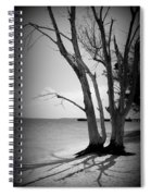 Tree By The Sea Spiral Notebook