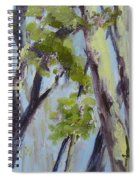 Tree Canopy Spiral Notebook