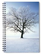 Tree Covered In Hoar Frost Spiral Notebook