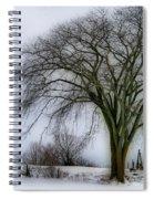 Tree Elder Spiral Notebook