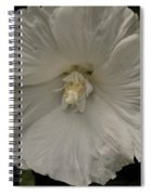 Tree Flower Spiral Notebook