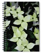 Tree Flowers Spiral Notebook