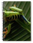 Tree Frog 16 Spiral Notebook