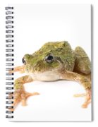 Tree Frog Ready To Jump Spiral Notebook