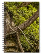 Tree Grows From Rock Outcrop Spiral Notebook