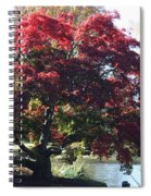 Tree Hanging Into Lake Spiral Notebook