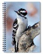 Tree Huggin' Nut Lover Spiral Notebook