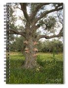 Tree Hugging Green Ecological Concept  Spiral Notebook