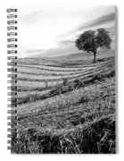 Tree In A Mowed Field. Auvergne. France Spiral Notebook
