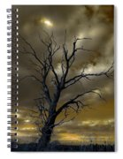 Tree In A Storm Spiral Notebook
