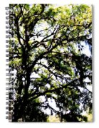 Tree In Blue Ridge Mountains Spiral Notebook